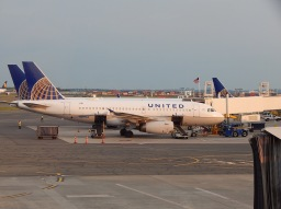 I Know You're Mad at United but… (Thoughts from a Pilot Wife About Flight 3411)